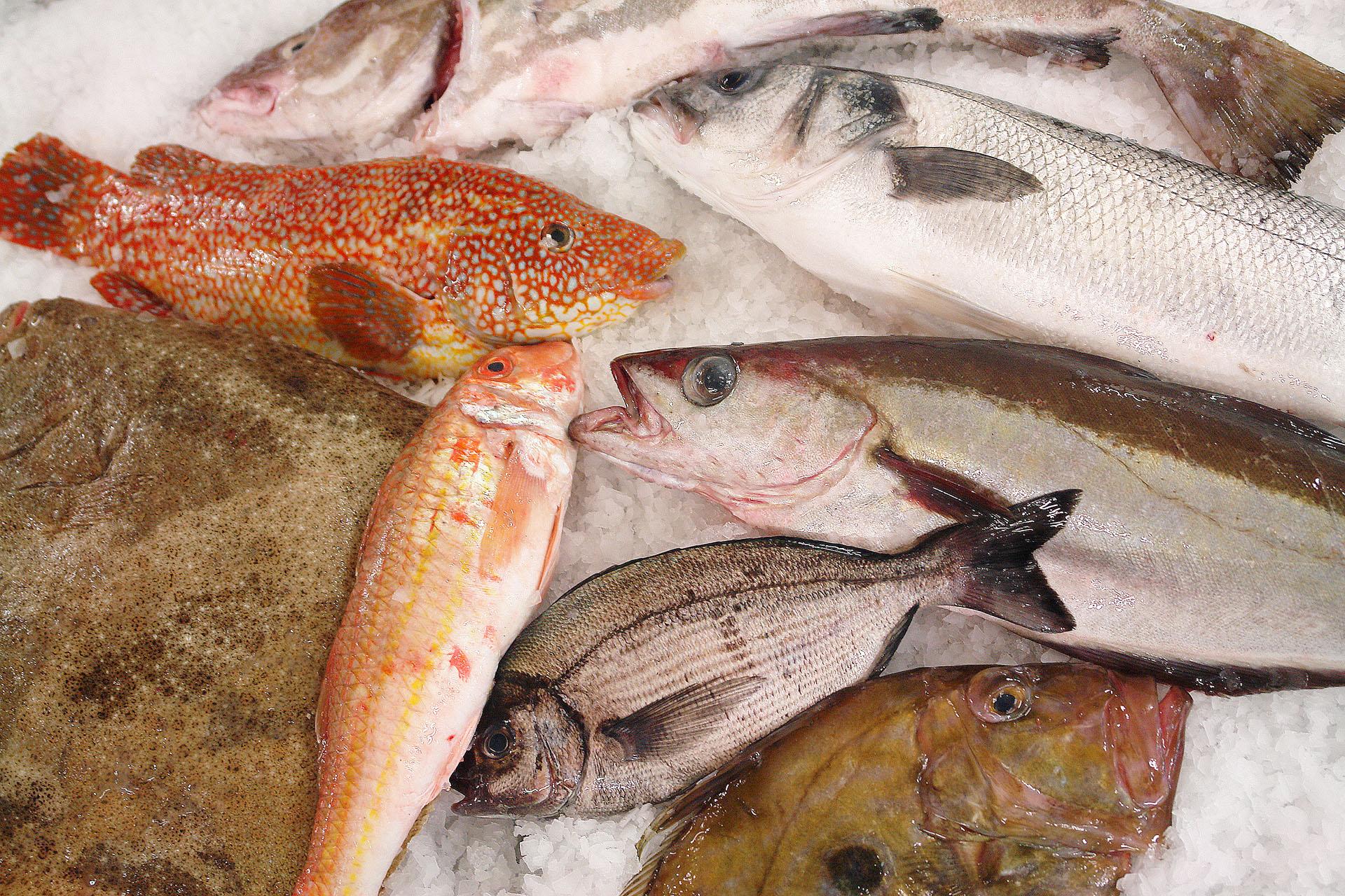exclusivité Beganton: poisson frais