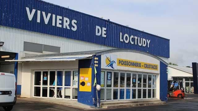 Premiers coups de pioche pour le nouvel atelier des viviers de Loctudy